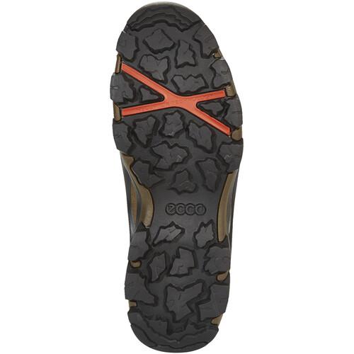 Vente Magasin D'usine ECCO Terra Evo Mid - Chaussures Homme - marron sur campz.fr ! Magasin D'usine Livraison Gratuite Le Meilleur Magasin Pour Obtenir Vente Pas Cher Exclusive QEVYfZWUUf